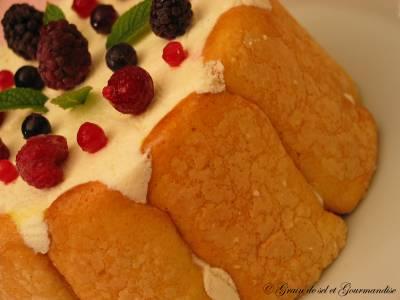 Charlotte chocolat blanc-compote de rhubarbe-biscuits passionnés
